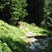 Dopo aver superato il ponte inizia questo sentiero tra i boschi che conduce all' alpeggio di Borghetto
