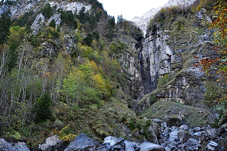 Dunggellauischlucht. Links von den Felsen, die im Wald sichtbar sind steigt man bequem entlang der Wand auf.