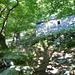 Aufstieg nach Cranzünell - Piòdau liegt heute eingeschlossen vom Wald