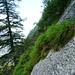 Alpe di Cranzünasc - Anfang der Höhentraversierung