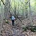 Nel primo tratto di bosco forse malandato anche dalle ultime forti pioggie.