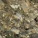 Il particolare tipo di roccia ... a vista non da un gran senso di solidità.