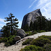 Half Dome East Flank on the descent