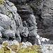 Selber bin ich vom Restschnee im Bild von hinten auf den Pfeiler in der Bildmitte, und von da direkt über die Felsen links im Bild zum Gipfelplateau hoch.