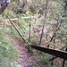 Ausgesetzter, gut sichtbarer, aber schlecht gesicherter Pfad kurz nach der Leiter. Vorsicht, rechts im Bild folgt gleich der Abbruch!