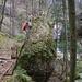 Ein Wurzel-Boulder im Jomertobel