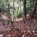 Da und dort geht es links und rechts gehörig hinunter. Das Gelände hier ist wesentlich steiler, als es auf dem Bild erscheint.