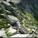 Der Pfad führt um die Felsen und dann herab zur unteren Alp Scaradra.