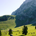Zum Einstieg der Nasenlöcher: Siebenhütten - Chuesitz - Chammhalde