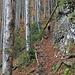 Ein Männdlein im Walde...