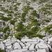 Sehr schönes Karrenfeld zwischen beiden Gipfeln und gegen Oberbergli hinunter