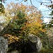 Herrliche Granitfelsen prägen den Bergrücken.