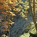 Wunderschöne Herbstfarben im Hinteren Kraxenbachtal.