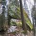 Ein toller Felsen mitten im Wald.