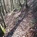 Abstieg von der Schnabelburg