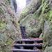 Treppenweg runter zum See III - darunter rauscht der Wildbach