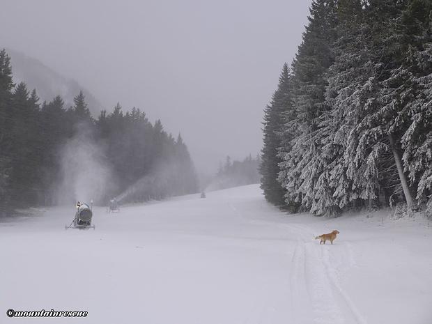 Zwischen Schneekanonen und Sturmböen geht es die Piste hinauf...