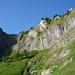 """Schöne Wildheuplangge im Sulzgraben – die Route führt unter der grauen Wand über die """"Platten"""" steil rechts aufwärts"""