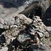 [u Anna] sur le sommet du Piz San Jon d'Immez
