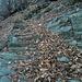 Benchè di fattura un po' rozza, questa mulattiera interamente gradinata facilita moltissimo la discesa da Nebi a Cavigliano su un sentiero semi-abbandonato ma ben segnalato.