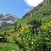 Kurz vor der Alp Mulix, hinten die 3 Gipfel des Piz d'Alp Val