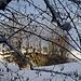 Durchblick zum ehemaligen Steinbruch am Reckeberg