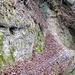 Bei mächtigen Nagelfluhfelsen trifft der Pfad auf den Linderweg.