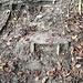 Unterhalb der Claridahütte finden sich einzelne Überreste früherer Pfadbefestigungen.