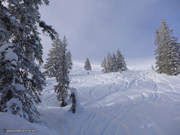 Nach dem Hochwald erreichen wir die freien Flächen unterhalb des Gipfels