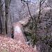 il ponte che permette l'attraversamento della gola per poi andare a San Carlo di Negrentino