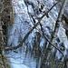 Der Schnee fehlt. Eis ist aber reichlich vorhanden.