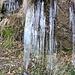 Eiszapfen unterhalb von Mosciöi