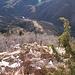 Visuale a picco sulla via di salita. In basso il fondovalle delle Centovalli ed il Lago di Palagnedra
