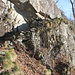 sentiero (la scalinata citata nella foto precedente)