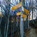 Bivio poco prima di arrivare al Sasso Rosso a quota 1295 metri d'altezza,segnaletica efficiente.