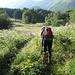 durch Wiesen und Wälder zum Ubtschik-Pass