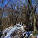 Der Wanderweg über den Gratrücken Meriggio war stellenweise stark vereist.
