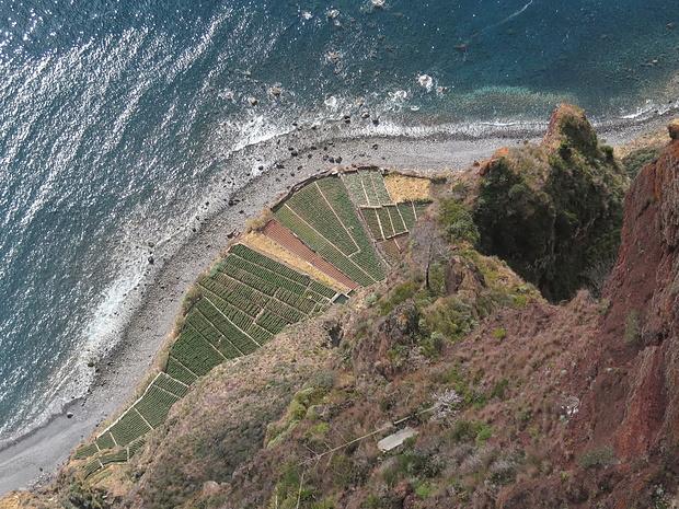 Cabo Girão: Blick vom Skywalk hinunter zu den Gärten am Meer