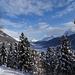 Blick aus dem Winterwald ins Oberengadin