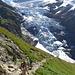 Oberer Grindelwaldgletscher. für Lebendsmüde Wanderer sehr empfehlenswerter Aufstieg. Hier rumpelte es dauernd mit großem Getöse ;-)