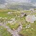 Der Abstieg vom Seewligrat ins Griesstal.