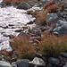 Die noch junge Aare im Gletschervorfeld kurz vor der Mündung in den Grimselsee