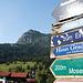 Anstieg ab Tannheim-Berg
