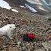 Rund 500 Meter vor dem Gipfel errichte ich ein Hundebiwak und steige über den SW-Grat allein weiter.