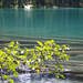 Frühling am Middle Joffrey Lake