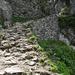 Seit Jahrhunderten benutzt das Serpentinen-Steigle