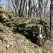 Mauerresten der Ruine Altlägern