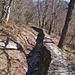 Der Weg von Tegna nach Colma verläuft teilweise auf der Begrenzungsmauer eines Baches, ähnlich wie die Levada-Weglein in Madeira