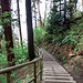 Trail zum Wreck Beach
