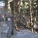 wer vom Monte Bisbino kommt, sollte sich von diesen Verbotsschildern nicht irritieren lassen: denn das hier ist der richtige Weg!!!